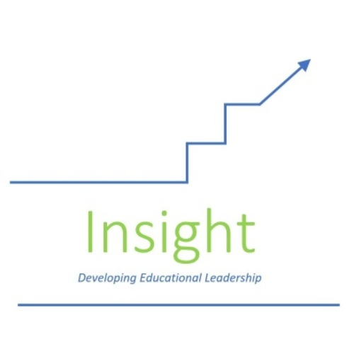 Insight Report