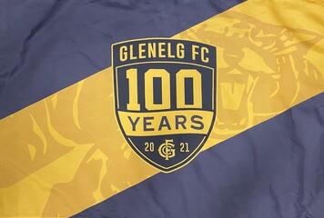 2021 100 Year Flag