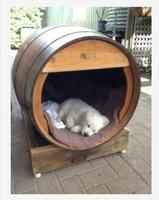FOURLEGS DOG CAVE (SMALL - MEDIUM DOGS)